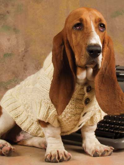 Knitting Patterns For Dogs Book : Pet Pleasers for Dog Lovers Knitting Pattern Book